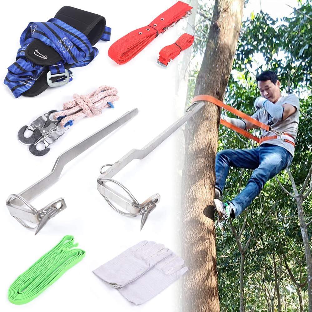 MOMOJA - Juego de escalada de árboles para escalada de ...