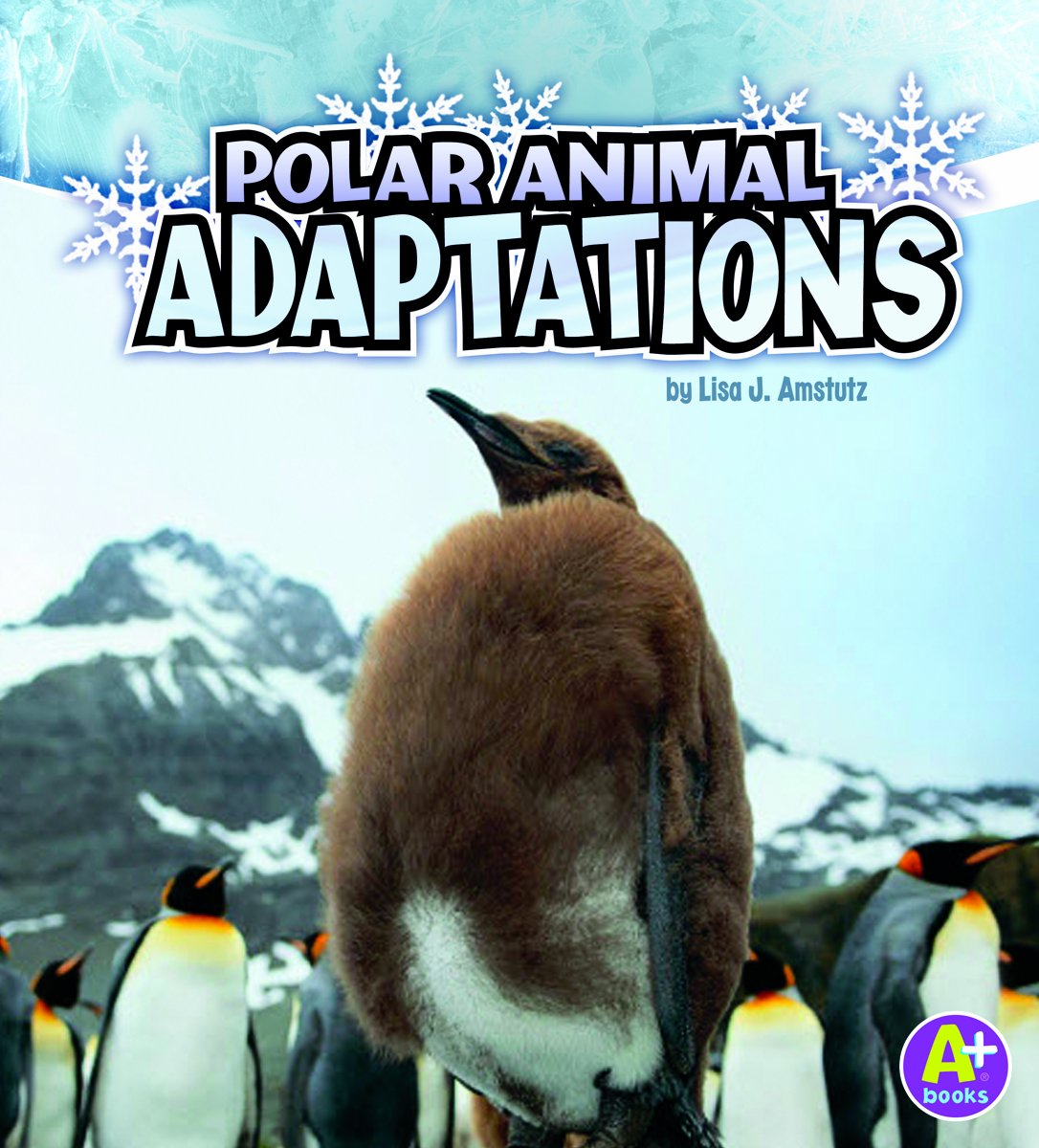 Reviews Polar Animal Adaptations Amazing Animal Adaptations