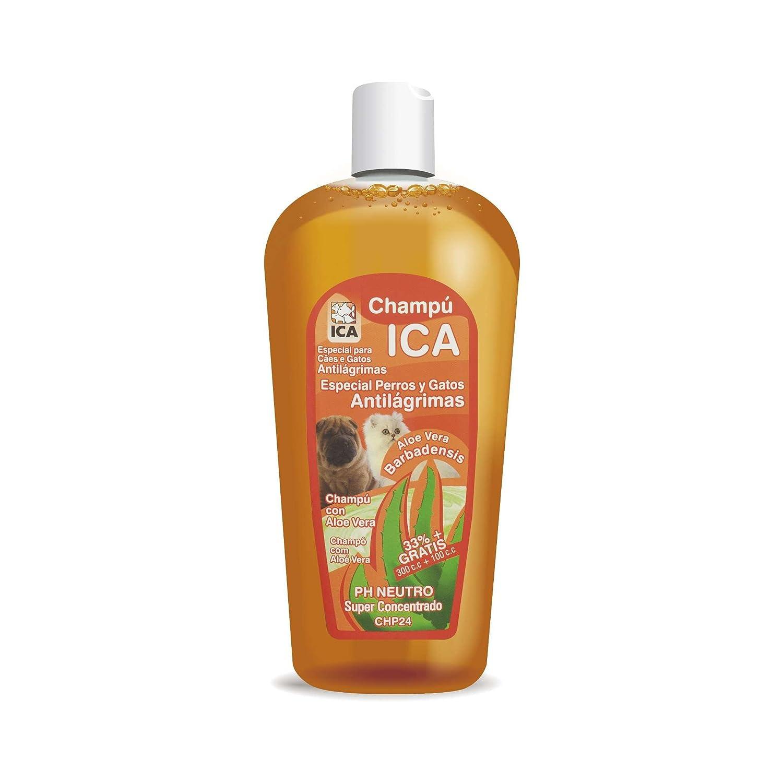 ICA CHP24 Champú Anti Lágrimas con Aloe Vera para Perros y Gatos: Amazon.es: Productos para mascotas