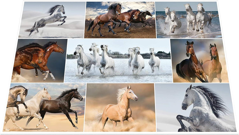 Herma Schreibunterlage 550 x 350 Hunde