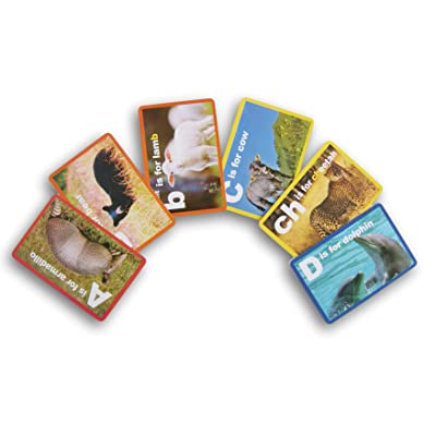 Teaching Tree Animal Pictures Alphabet Flash Cards - 36 Count: Toys & Games