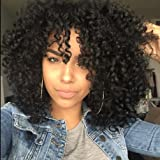 Short Curly Wigs Afro Kinky Curly Wigs for Black Women Heat Resistant Synthetic Full Black Wigs With Bangs