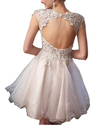 LeoGirl Womens Lace Embroidered Tulle Short Prom Dresses Juniors Babydoll Homecoming Party Dress (2,