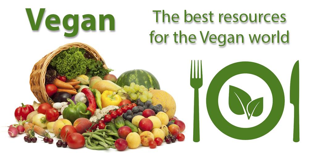 Review Vegan