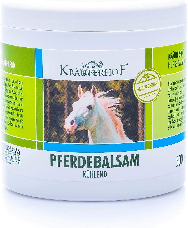 Bálsamo de caballo se enfría y animación, valiosa Extractos de hierbas de Castaño de indias, Árnica, Romero y Minzoel Herbolario Lata con Papel de aluminio sellado Diversos Tamaños - 500 ml