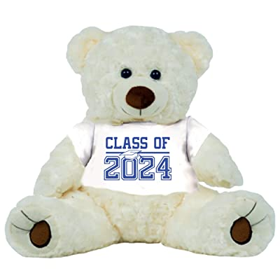 "8th Grade Class of 2024 Graduation Personalized 16"" Teddy Bear Choose School Colors Personalized Name Jr High Graduates Custom Gift: Baby"
