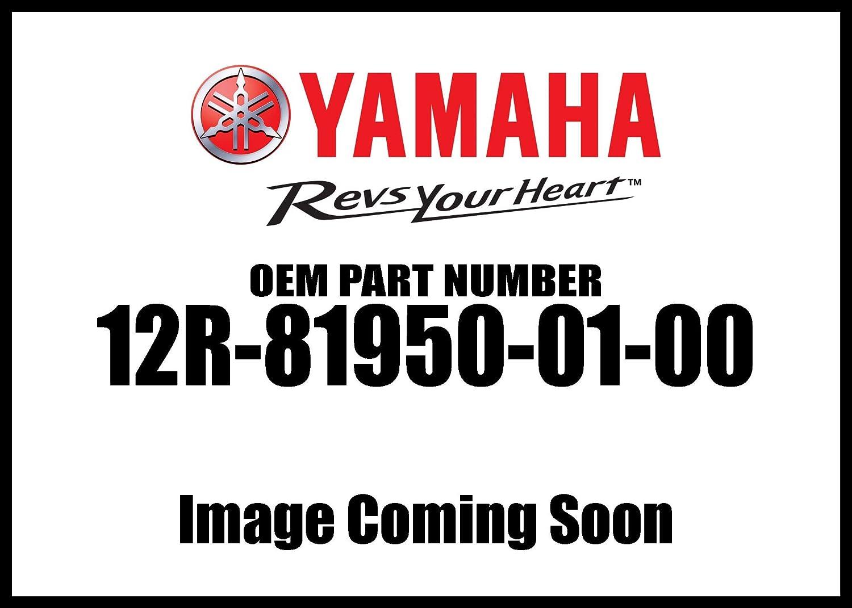 Yamaha Relay Assembly