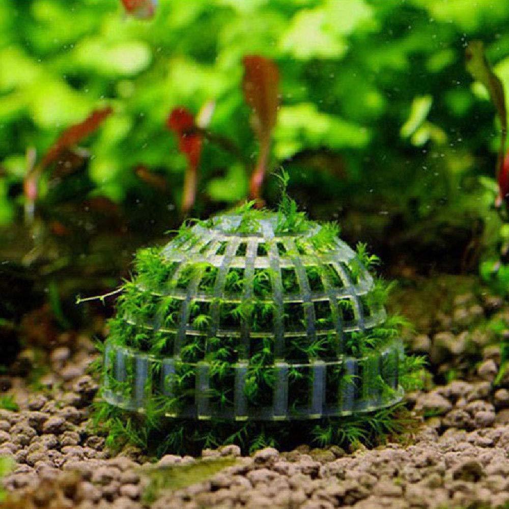 Lecimo Bola Mineral Natural del Musgo AcuáTico para El Acuario Crystal Red Shrimp Fish Tank: Amazon.es: Hogar