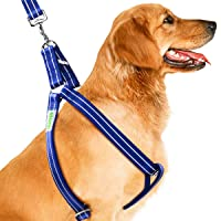 Deals on CoolPets Dog Harness Leash Set