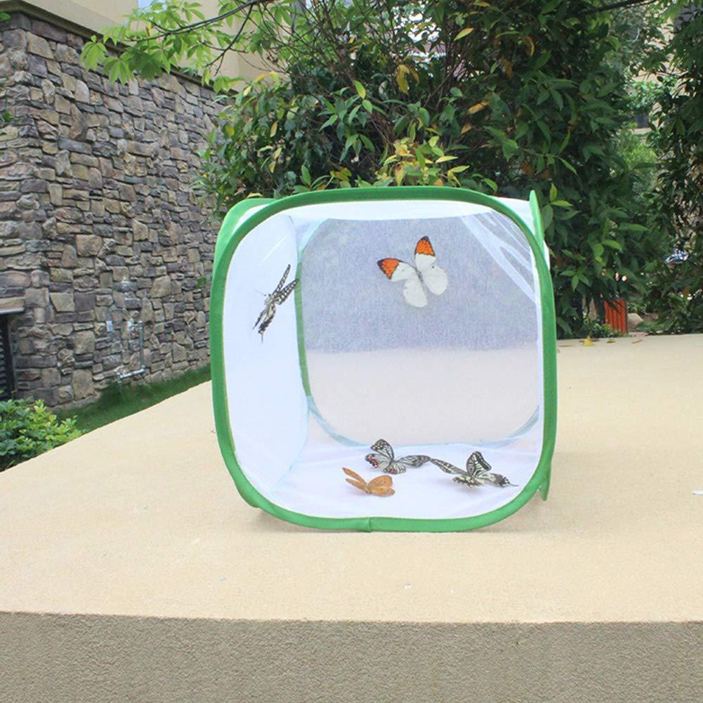 Insecte /Élevage Cages Papillon Habitat Cage avec PVC Transparent Film Pliable Light-Transmitting Amovible Blanc Insecte et Papillon Filet Plante Serre Tente pour Raising Insectes Ext/érieur Activit/és