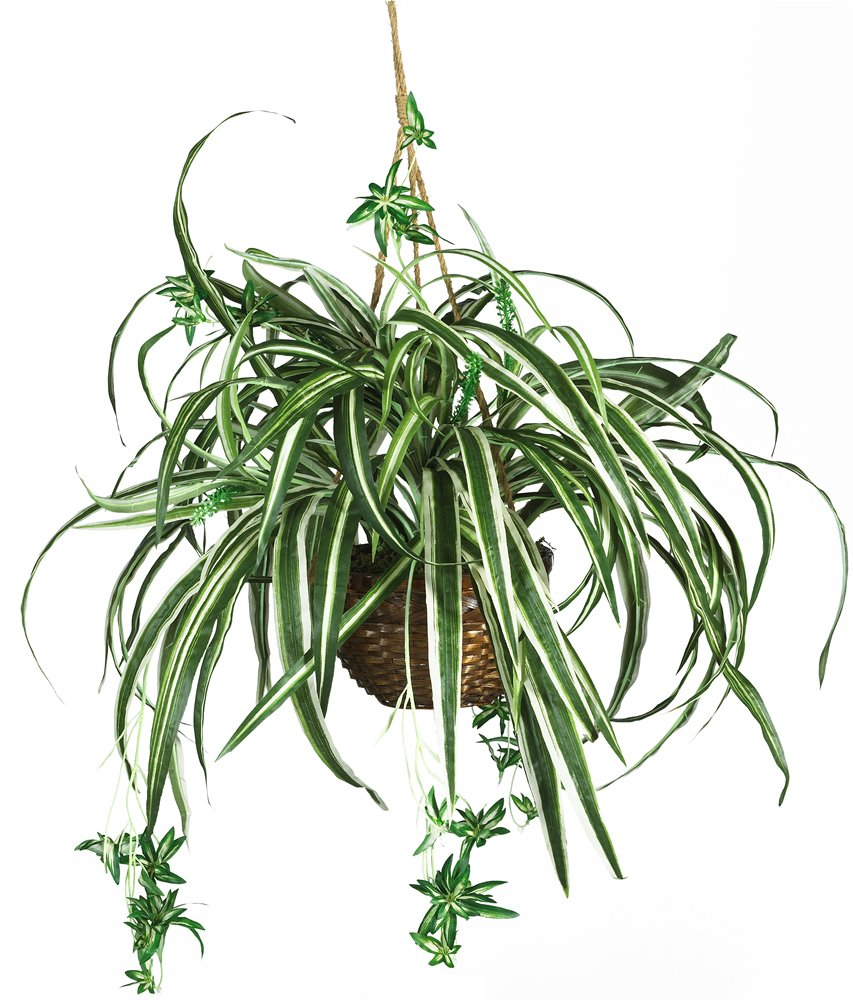 Nearly Natural 6607 Spider Hanging Basket Decorative Silk Plant, Green