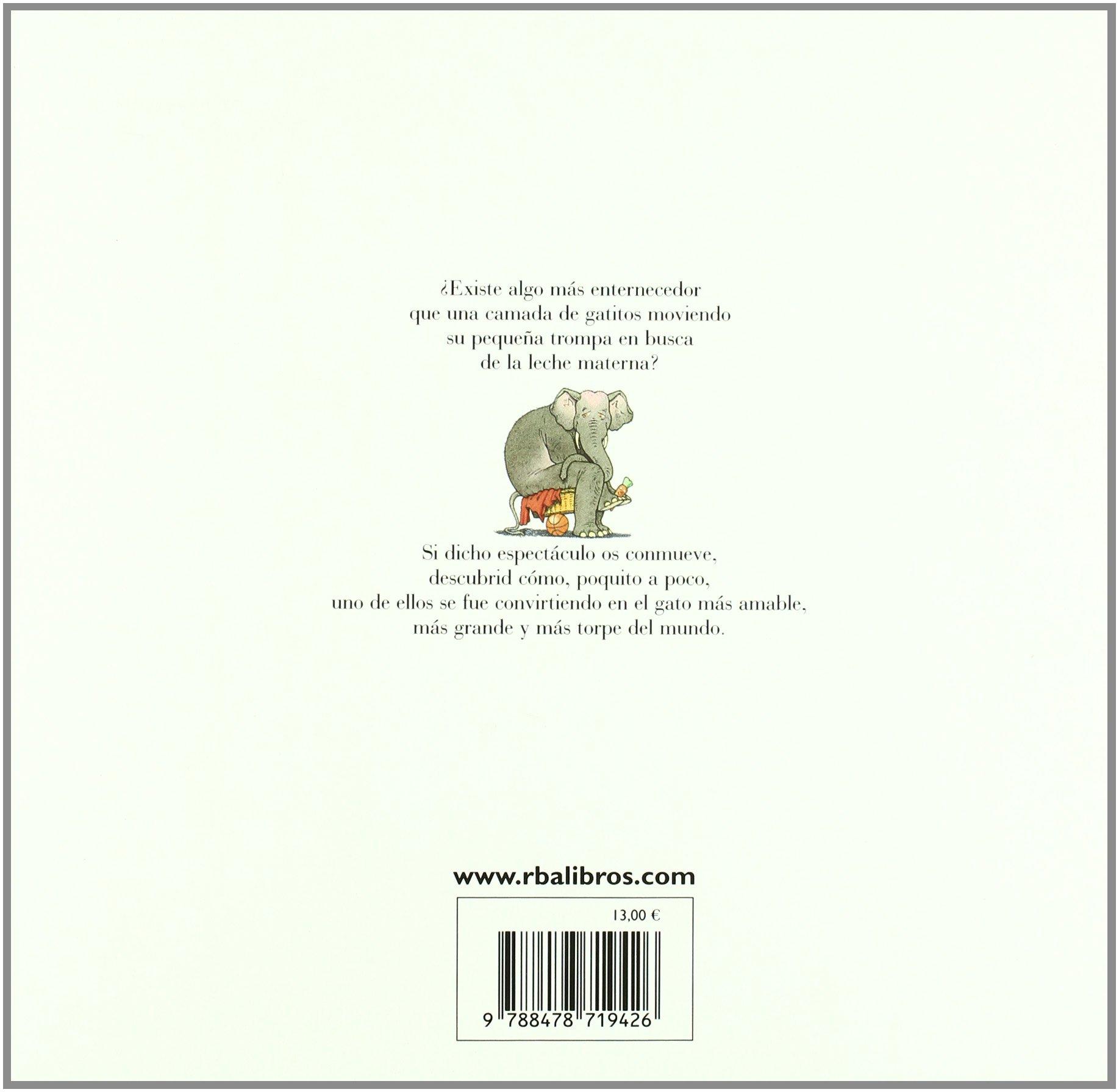 Amazon.com: Cuando Mi Gato Era Pequeno (Spanish Edition) (9788478719426): Gilles Bachelet: Books