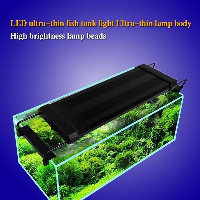 Luz LED Acuario, Pantalla LED Acuario, Iluminacion LED para Acuarios Plantados Lampara LED para Peceras 30-48 cm, 6W, 7000K con Enchufe: Amazon.es: ...