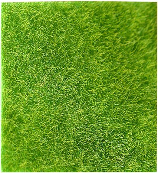LIOOBO 15x15CM hada artificial césped artificial miniatura adorno jardín vidrio mini casa decoración artesanal (verde): Amazon.es: Jardín