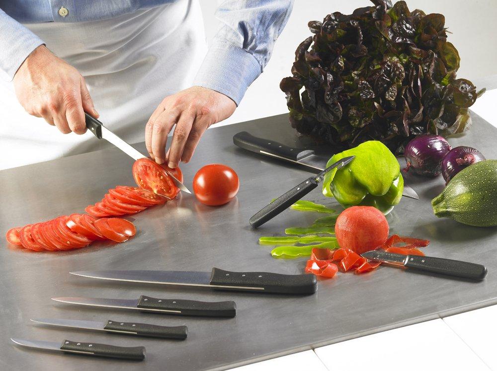 Nogent Expert 3-1/2-Inch Paring Knife, Black Polypropylene Handle by Nogent (Image #2)