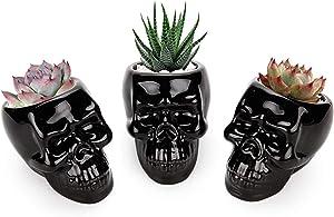 T4U Black Ceramic Skull Shaped Succulent Planter Pots Set of 3, Cute Cactus Plant Pot Creative Pen Pencil Holder for Home Office Desk Decoration Birthday Wedding