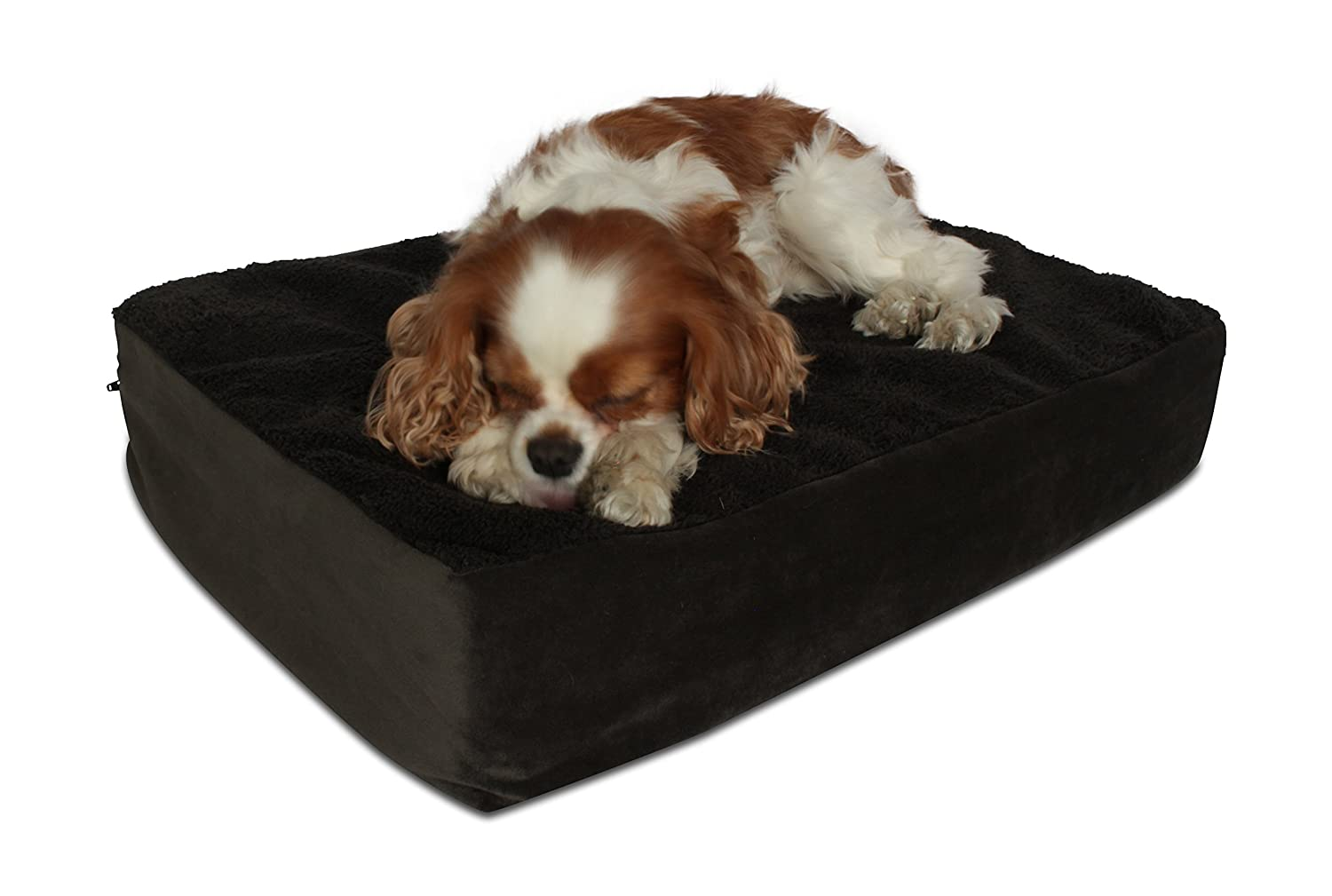 Ocean bluee Small Ocean bluee Small Oliver & Iris Mf-Ob-Sm 4-Inch Orthopedic Memory Foam Dog Bed, Ocean bluee, Small