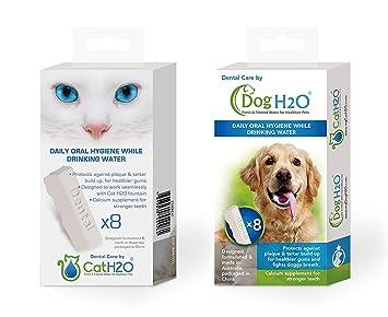 WilTec Fármaco cuidados dentaires cath2o 8 fuente de agua para gatos dentalcare gatos: Amazon.es: Productos para mascotas