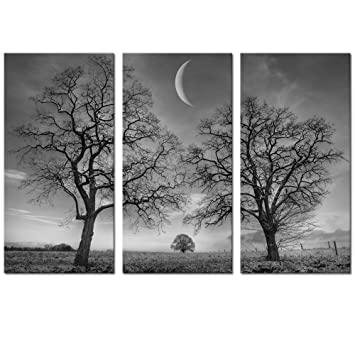 Amazon Black And White Moon Canvas Wall Art Decor Winter Tree Forest Under New Painting Prints For Home Framed Stretched