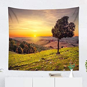 Suklly Tapestry Wall Hanging Polyester Tuscany Countryside Panoramic View Lonely Windy Olive Tree Rolling Home Decor Living Room Bedroom Dorm 60 x 80 inches Picnic Mat Beach Towel