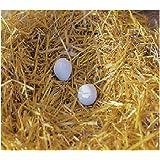 Kerbl 73004/2 Nesteier aus Ton für Hühner, 2 Stück