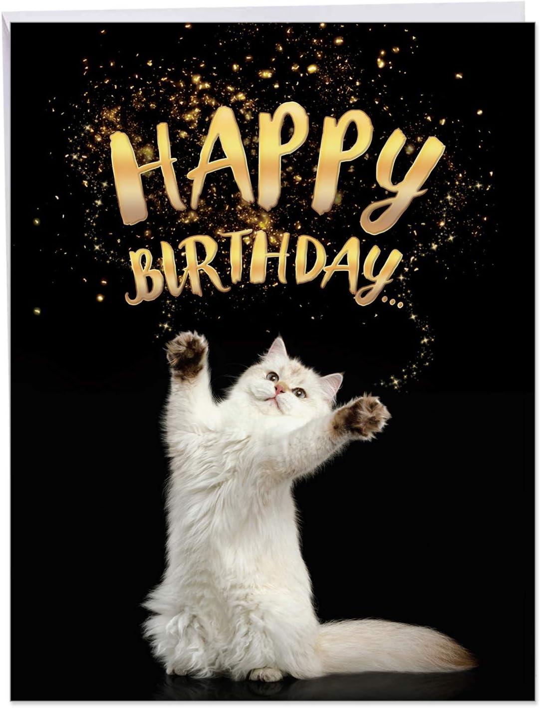 Miraculous Amazon Com Cat Sent Greetings Birthday Birthday Appreciation Personalised Birthday Cards Epsylily Jamesorg