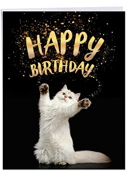 Cat Sent Greetings Birthday Appreciation Card With Envelope 85 X 11 Inch