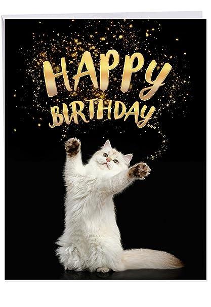Amazon Cat Sent Greetings Birthday Birthday Appreciation Card