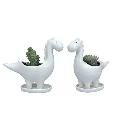 LILIRIO Dinosaurs Succulent Plants Pots,Animal Planter Pots 2 Pack Pots for Plants Flower Pots Indoor&Outdoor Ceramic Plants Pots for Cactus with Drain Hole and Saucer Trays,Perfect Gift Idea.: Garden & Outdoor