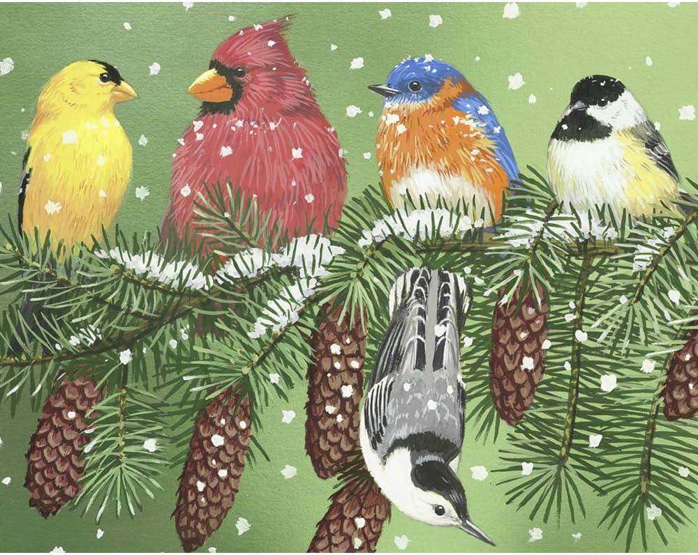 Christmas Bird Puzzle 300 Piece for Kids Adults Winter Snow Cardinal Nuthatch Chickadee Bluebird Yellow Finch Jigsaw Puzzle Unique Audubon Backyard Bird Puzzle Gift for Bird Lovers and Puzzle Lovers