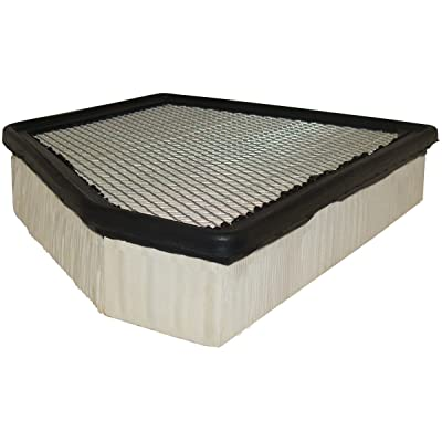 Luber-finer AF3173 Heavy Duty Air Filter: Automotive