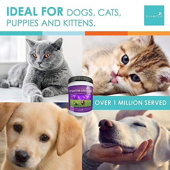 Nusentia Enzyme Miracle Enzima Milagro | Canine enzimas ...