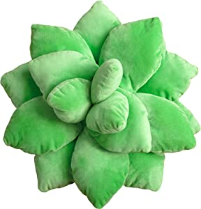 Succulent Cactus Decor Pillow for Garden or Green Lovers - Baby Green Plant Throw Pillows for Bedroom Room Accents and Home Decoration - Novelty Plush Cushion - Cute Accent Succulents