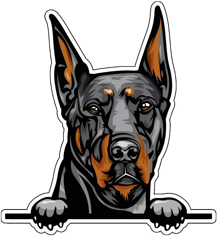 Doberman Vinyl Sticker Decal - Dog Breed Sticker, for Tumblers, Laptops, Car Windows - Canine Owner Gift