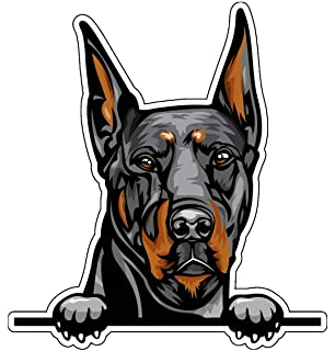 Cane Corso Vinyl Sticker Decal Dog Breed Sticker Canine Owner Gift for Tumblers Car Windows Laptops