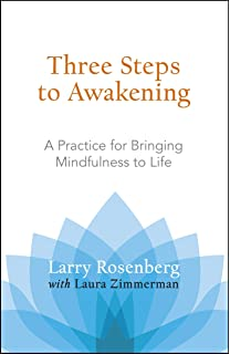 Amazon breath by breath the liberating practice of insight three steps to awakening a practice for bringing mindfulness to life fandeluxe Images