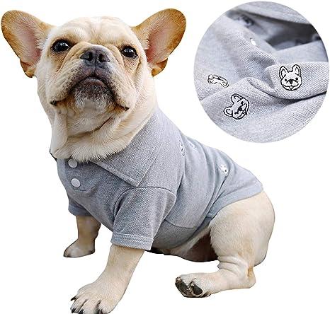 Boy Dog Tshirt French Bulldog Clothing Sea Creatures
