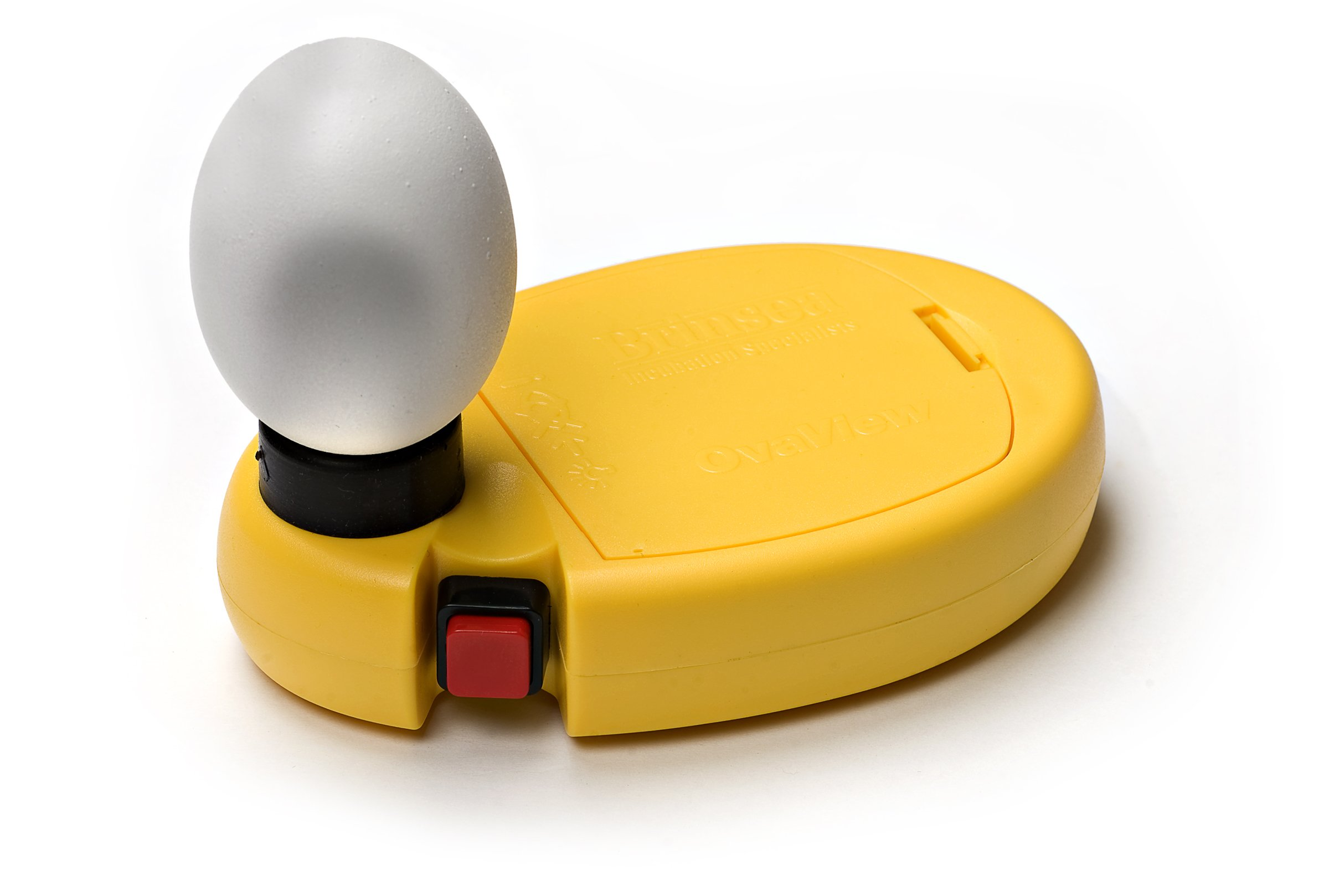 Brinsea Products Candling Lamp for Monitoring The Development of The Embryo within The Egg by Brinsea Products