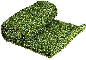 SuperMoss (22396) InstantGreen Moss Mat, Fresh Green, 3ft x 50ft