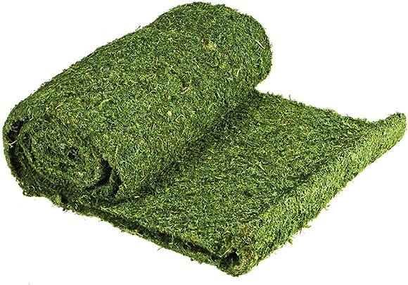 SuperMoss 22396 InstantGreen Moss Mat, Fresh Green, 3ft x 50ft