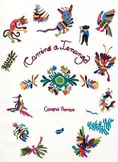 Camino a Tenango (Spanish Edition)