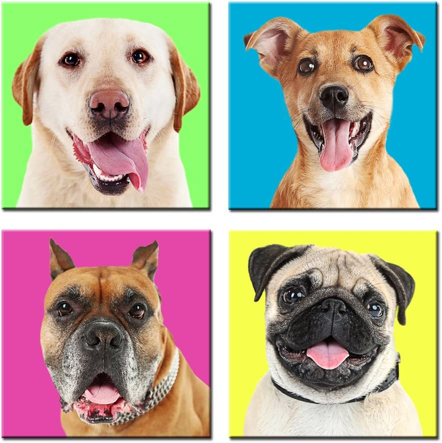 Kreative Arts - Modern Giclee Prints Artwork Cute Dogs Pictures Colorful Photo Paintings Print on Canvas Wall Art for Home Decor Stretched and Framed Ready to Hang (16''x16''x4pcs/Set)