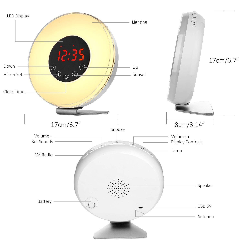 PowerLead - Despertador Digital con Alarma de Amanecer, simulación de Amanecer, Despertador con luz con 7 Colores y 7 Sonidos, repetición de Alarma y Radio ...