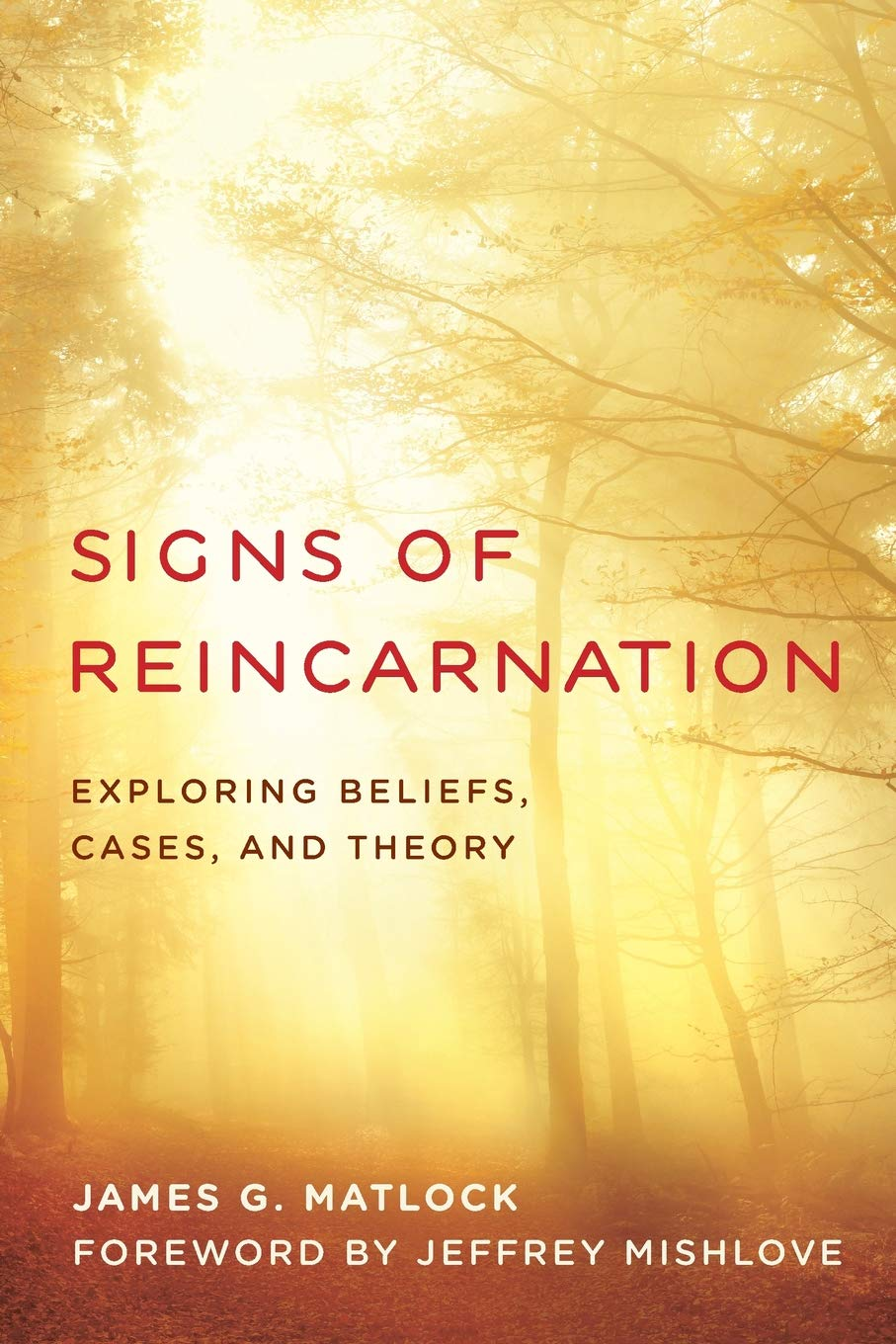 Signs Of Reincarnation  Exploring Beliefs Cases And Theory
