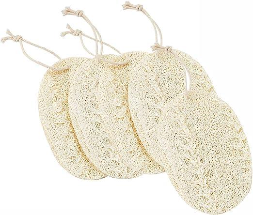 FSGD Paquete de 5 Orgánica lavavajillas esponjas, Scrub ...