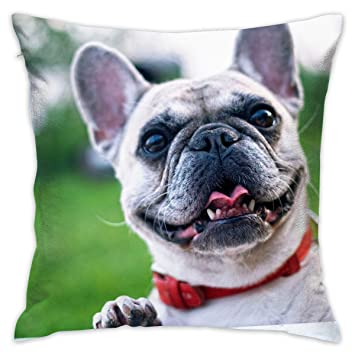 ShuicYcY - Funda de almohada (45 x 45 cm), diseño de perro bulldog