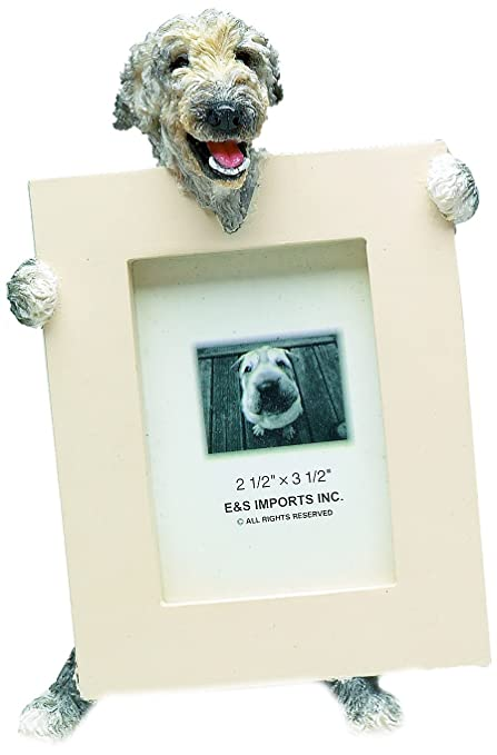 Amazon.com : Irish Wolfhound Picture Frame Holds Your Favorite 2.5 ...