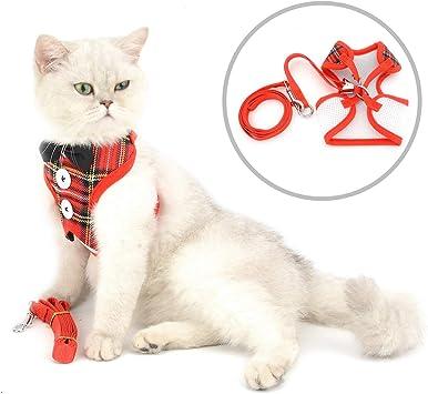 smalllee_lucky_store - pajarita arnés y correa para gato antiescape ...
