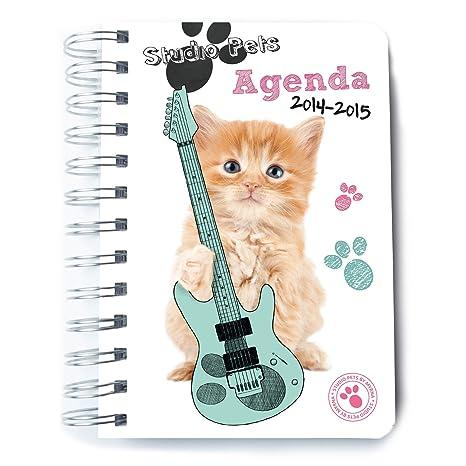 Agenda escolar Gatos dia pagina 2014 / 2015