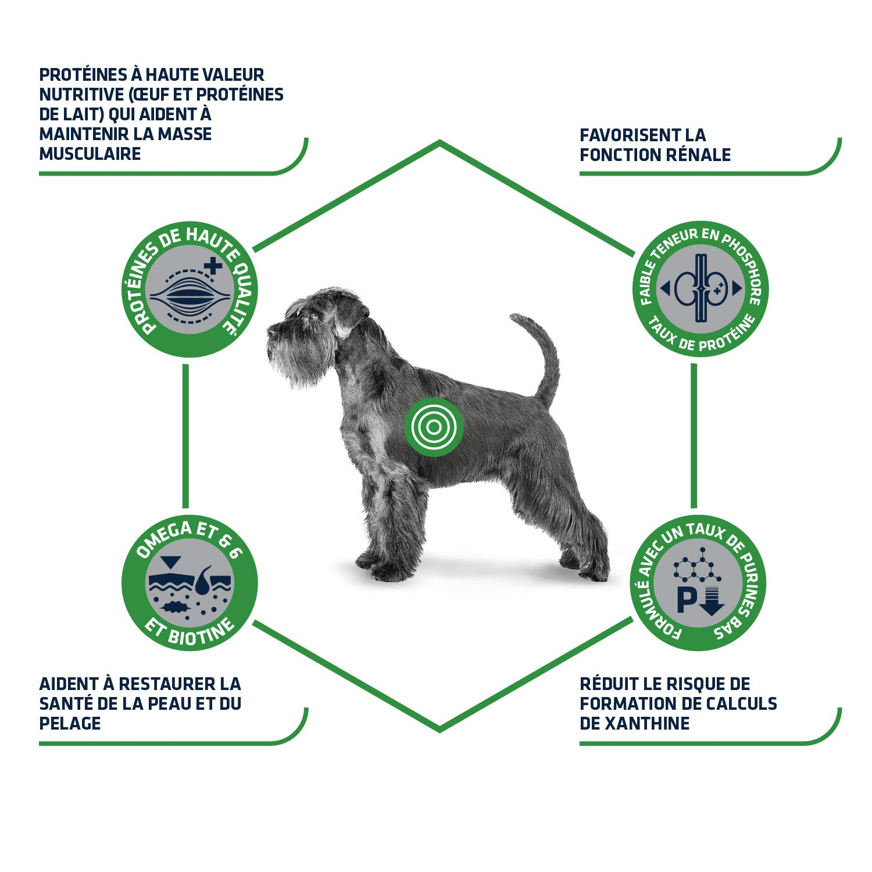 Advance Veterinary Diets-Pienso para Perros con Leishmaniasis